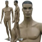 African American Male Fashion Mannequin with Molded Hair