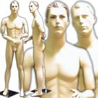 Men\'s Mannequin with Flexible Arms and Interchangeable Heads