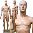 Plastic Male Full Size Mannequin with Removable Abstract Head