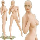 Shop Voluptuous Female Mannequins