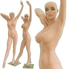Curvaceous Female Mannequin - Dolly